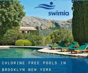Chlorine Free Pools in Brooklyn (New York)