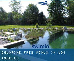Chlorine Free Pools in Los Angeles